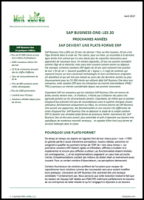 evolution SAP Business One
