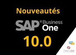 SAP Business One v10